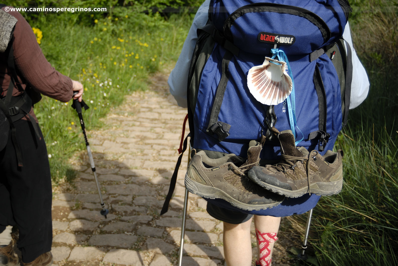 Choosing the most suitable backpack for the Camino de Santiago, a laborious but entertaining task